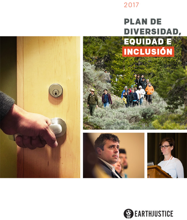 The Diversity, Equity & Inclusion Action Plan.