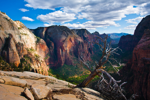 Zion National Park is one of 19 National Parks to ban the sale of plastic water bottles.